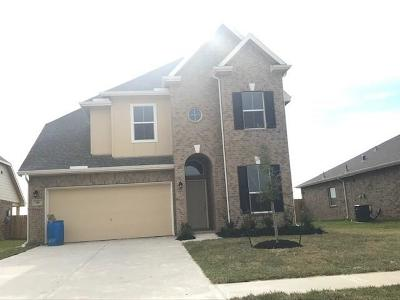 Baytown Single Family Home For Sale: 210 San Marcos Drive