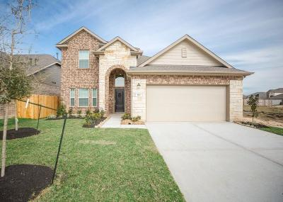 Galveston County Single Family Home For Sale: 623 Liberty Pines Lane