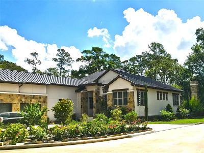 Houston Single Family Home For Sale: 5 W Shady Lane #D