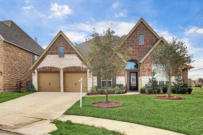 Pearland Single Family Home For Sale: 13620 Violet Bay Court