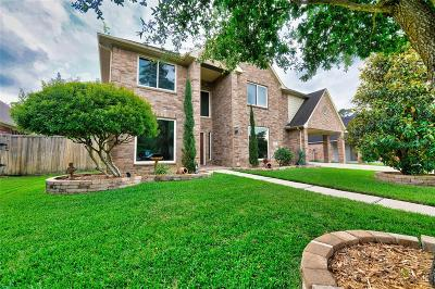 Galveston County, Harris County Single Family Home For Sale: 13618 Via Ponte Vecchio