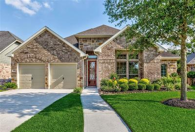 Spring Single Family Home For Sale: 27527 Pixie Springs Lane