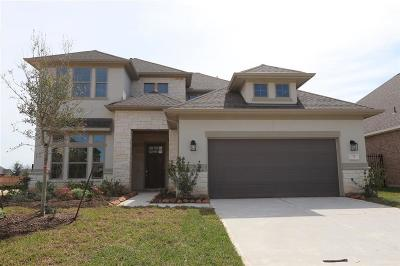 Tomball Single Family Home For Sale: 73 Botanical Vista