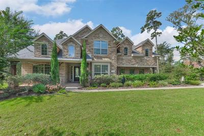Magnolia Single Family Home For Sale: 1137 Autumnwood Drive