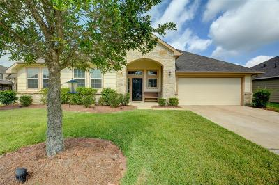 Tomball Single Family Home For Sale: 22303 Stonebridge Crossing Lane