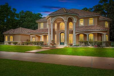 Conroe Single Family Home For Sale: 11759 Creek View Lane