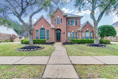 Friendswood Single Family Home For Sale: 901 Eagle Lakes Drive
