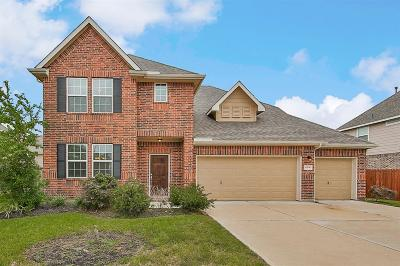 Pearland Single Family Home For Sale: 4206 Elaine Way