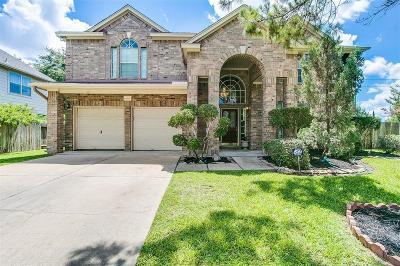 Sugar Land Single Family Home For Sale: 11331 Ashford Point