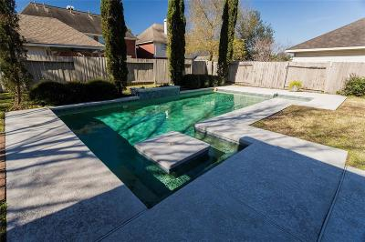 Sugar Land, Sugar Land East, Sugarland Single Family Home For Sale: 2810 Gray Moss Court