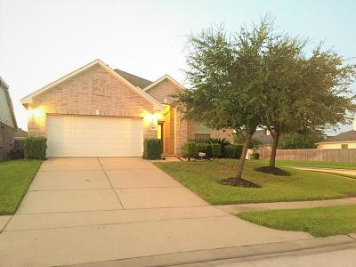 Tomball Single Family Home For Sale: 8902 Rollick Drive