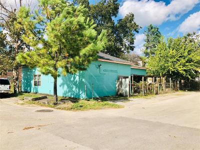 Houston Single Family Home For Sale: 601 Middle Street