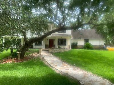 Angleton Single Family Home For Sale: 121 Old Plantation Road