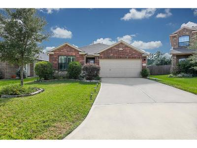 Tomball Single Family Home For Sale: 10231 Norway Spruce