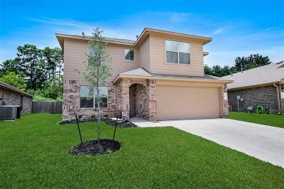 Tomball Single Family Home For Sale: 9419 Paloma Creek Drive Drive