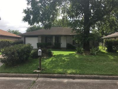 Houston Single Family Home For Sale: 8615 Deep Valley Drive