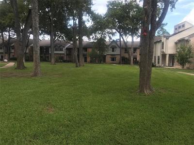 Houston Rental For Rent: 654 N Eldridge Parkway