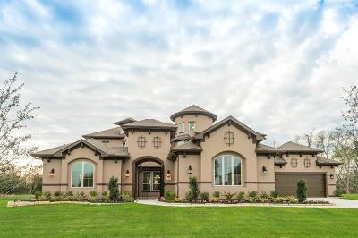Missouri City Single Family Home For Sale: 5218 Beekman Drive