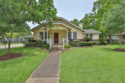 Sugar Land, Sugar Land East, Sugarland Single Family Home For Sale: 515 Lakeview Drive