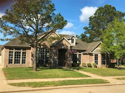 Katy Single Family Home For Sale: 6306 Bryce Canyon Drive