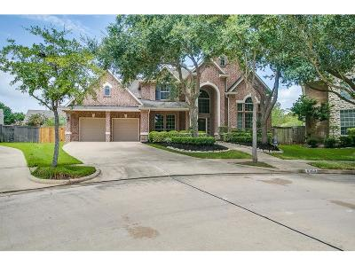 Sugar Land Single Family Home For Sale: 5303 Deerbourne Chase Drive