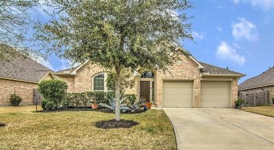 Pearland Single Family Home For Sale: 14103 Green Thicket Drive