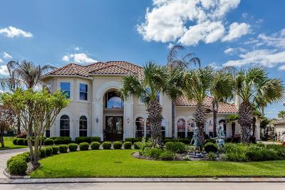 Houston Single Family Home For Sale: 2006 Cresent Palm Court