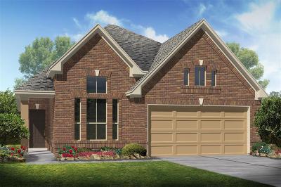 Alvin Single Family Home For Sale: 2191 Ann Street