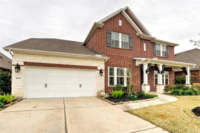 Tomball Single Family Home For Sale: 18706 Tamer View Court