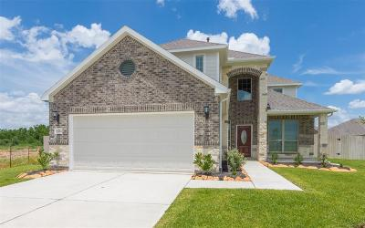 Fort Bend County Single Family Home For Sale: 2303 Shannon Court