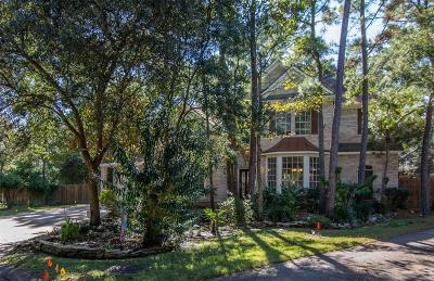 The Woodlands Single Family Home For Sale: 19 Verdant Valley Place