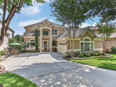 Montgomery Single Family Home For Sale: 3905 Treasure Island Drive