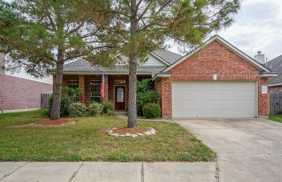 Houston Single Family Home For Sale: 9910 Pine Flats Drive