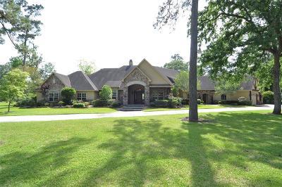 Houston Single Family Home For Sale: 1721 Palmetto Lane