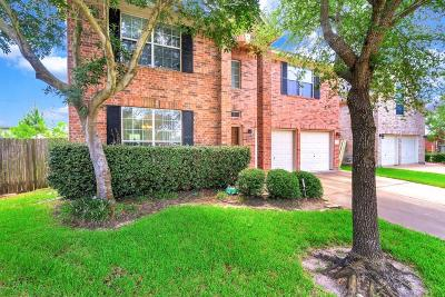 Houston Single Family Home For Sale: 615 Dinorah Court