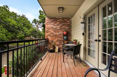 Houston Single Family Home For Sale: 2618 Princeton Street