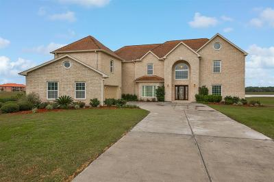 Fort Bend County Single Family Home For Sale: 13311 Lake Ridge Drive