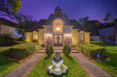 Houston Single Family Home For Sale: 1118 Ivy Wall Drive