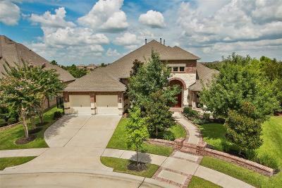 Cypress Single Family Home For Sale: 19202 Water Bridge Drive
