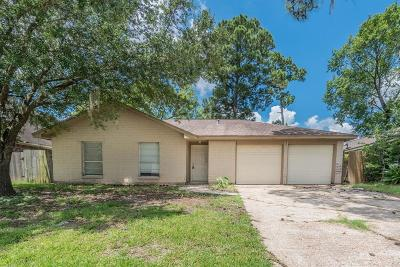 Houston Single Family Home For Sale: 538 Falloon Lane