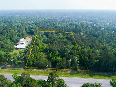 Conroe Farm & Ranch For Sale: 01 3083