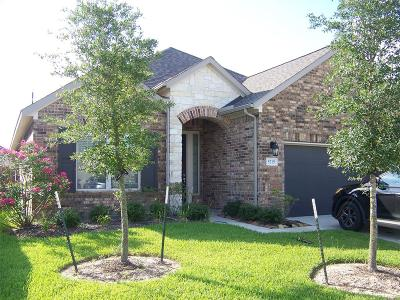 Katy Single Family Home For Sale: 5215 Baroness Lane