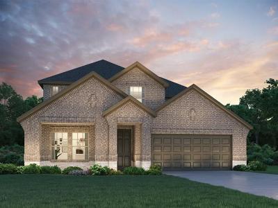 Rosenberg Single Family Home For Sale: 5826 Golden Peak Lane