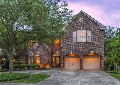 Bellaire Single Family Home For Sale: 5001 Evergreen Street