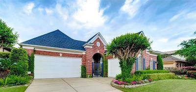 Houston Single Family Home For Sale: 3118 Rosemary Park Lane