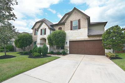 Tomball Single Family Home For Sale: 17919 Hillegeist Lane