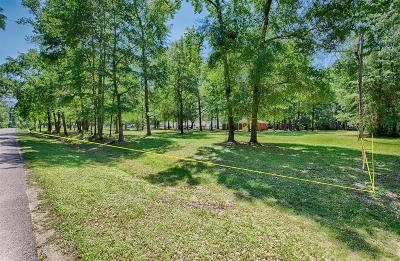 Conroe Single Family Home For Sale: 5226 Sapp Road