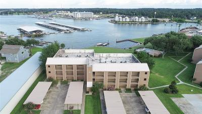 Conroe Condo/Townhouse For Sale: 15575 Marina Drive #312C