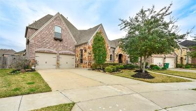 Riverstone Single Family Home For Sale: 3822 Hunters Gate Court Court