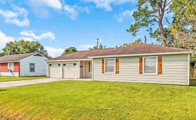 Houston Single Family Home For Sale: 1231 Havner Lane
